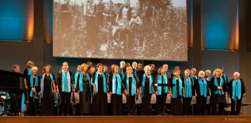 Chor: Gesellschaft der Musikfreunde in Perchtoldsdorf